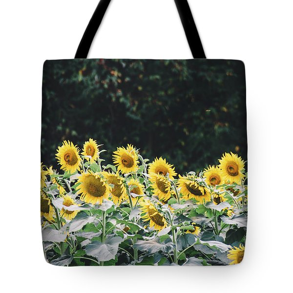 Tote Bag featuring the photograph Sunflowers 7 by Andrea Anderegg