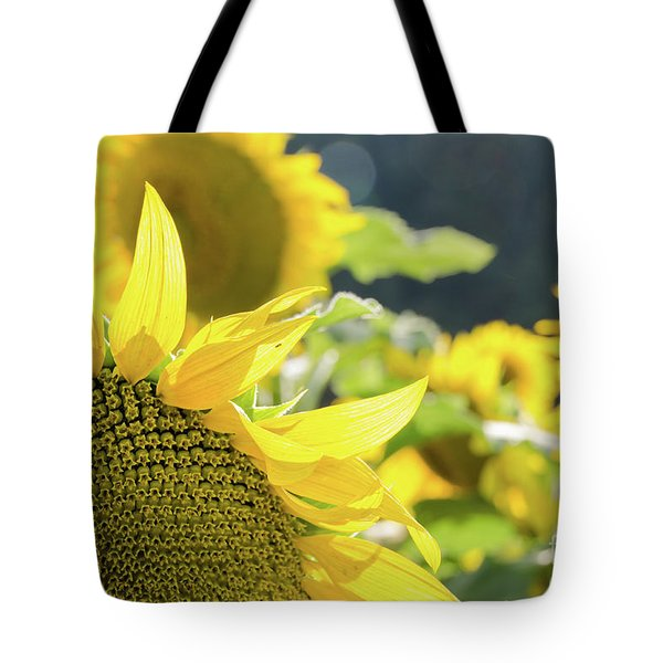 Tote Bag featuring the photograph  Sunflowers 8 by Andrea Anderegg