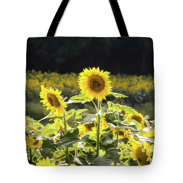 Tote Bag featuring the photograph Sunflowers 9 by Andrea Anderegg