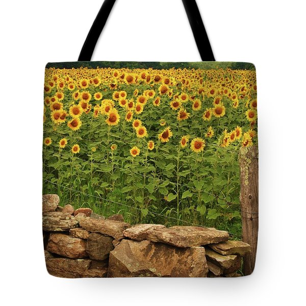 Sunflowers And Fence   Tote Bag