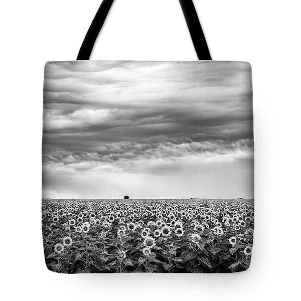 Sunflowers And Rain Showers Tote Bag