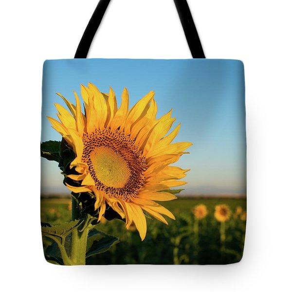Sunflowers At Sunrise 2 Tote Bag