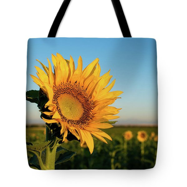 Sunflowers At Sunrise 2 Tote Bag