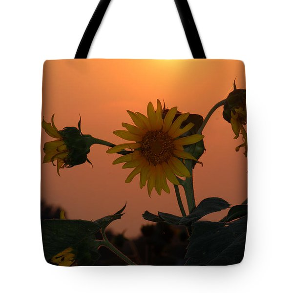 Sunflowers At Sunset Tote Bag