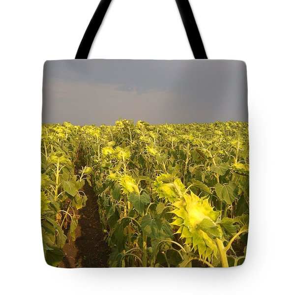 Sunflowers Before The Storm Tote Bag