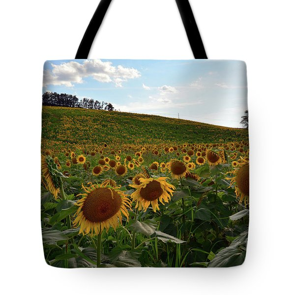 Tote Bag featuring the photograph Sunflowers Fields  by Frank Stallone
