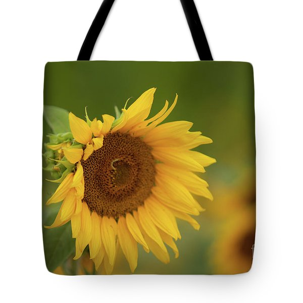 Sunflowers In Field Tote Bag