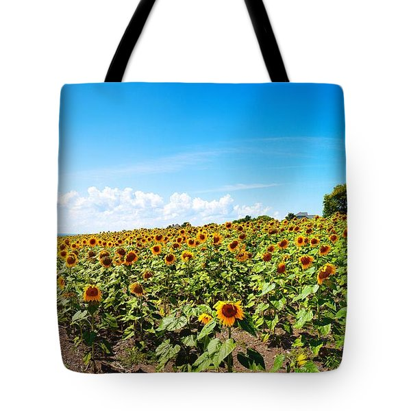 Tote Bag featuring the photograph Sunflowers In Ithaca New York by Paul Ge
