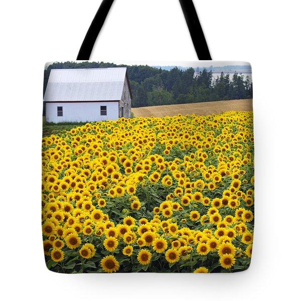 sunflowers in PEI Tote Bag