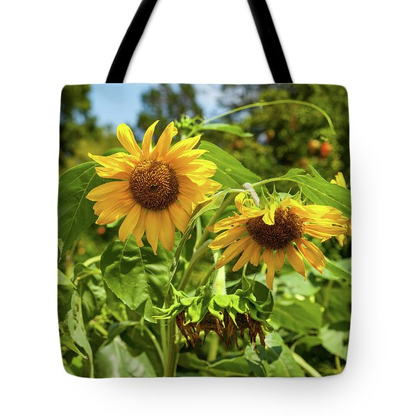 Sunflowers In Sunshine Tote Bag