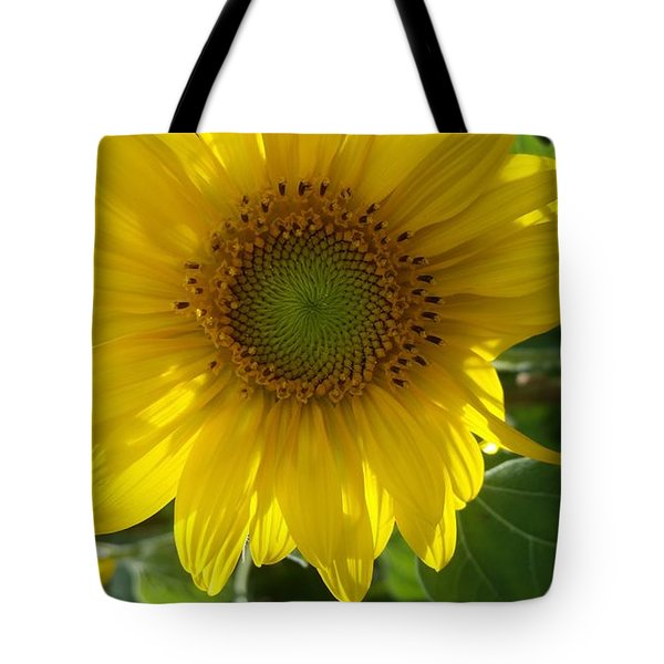 Sunflowers-just Bloomed Tote Bag