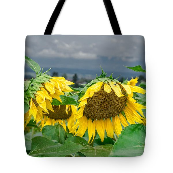 Sunflowers On A Rainy Day Tote Bag
