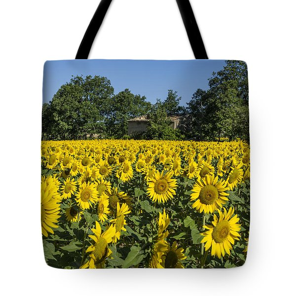Tote Bag featuring the photograph Sunflowers Provence  by Juergen Held
