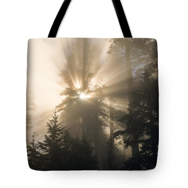 Sunlight And Fog Tote Bag