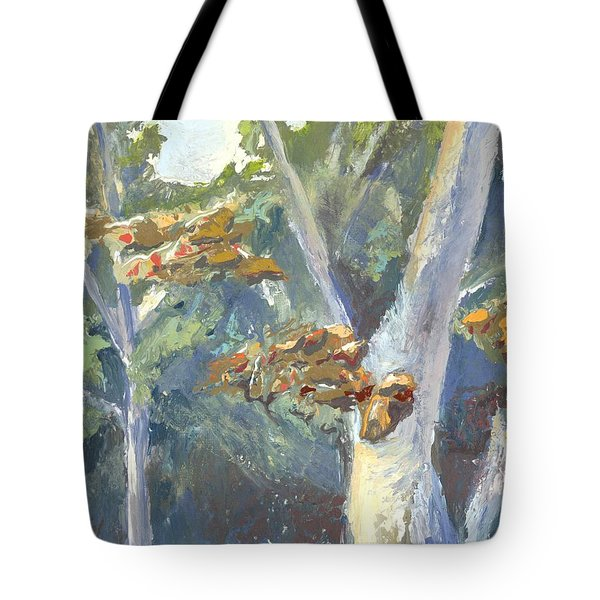 Sunlight And Sycamores Tote Bag