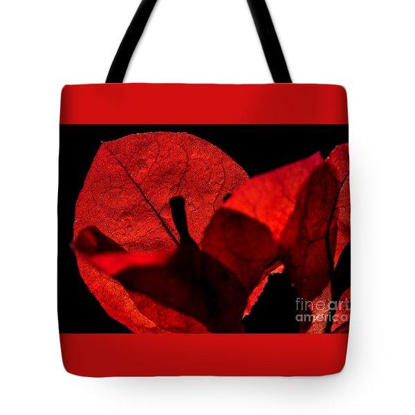 Sunlight Behind The Petals Tote Bag by Kaye Menner