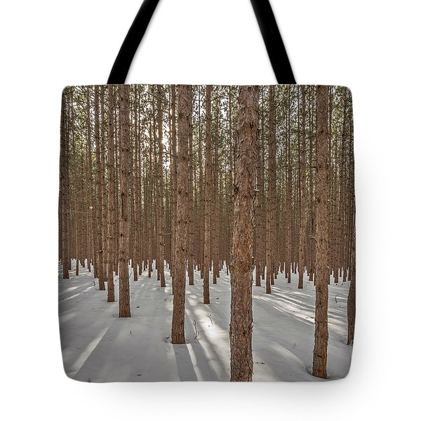 Sunlight Filtering Through A Pine Forest Tote Bag