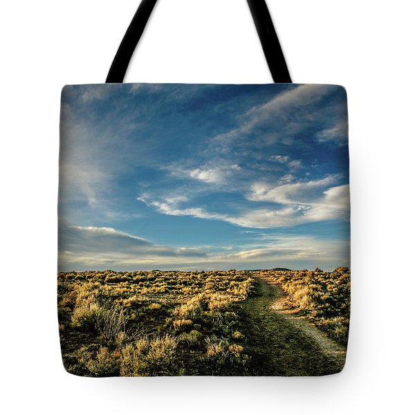 Tote Bag featuring the photograph Sunlight For Photographers by Marilyn Hunt