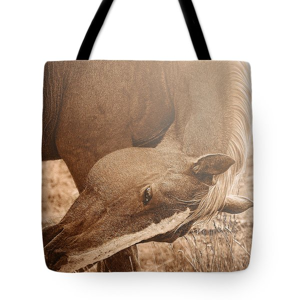 Sunlight And Grace Tote Bag