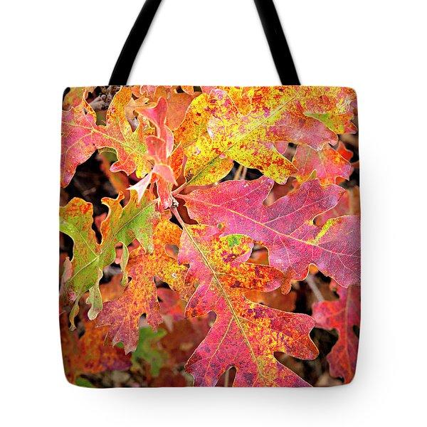 Sunlight Leaves Tote Bag