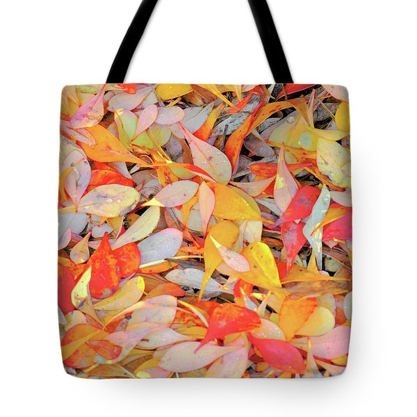 Sunlight On Barberry Leaves Tote Bag by Michele Penner