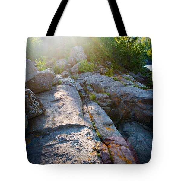 Sunlight On Cove Point Tote Bag