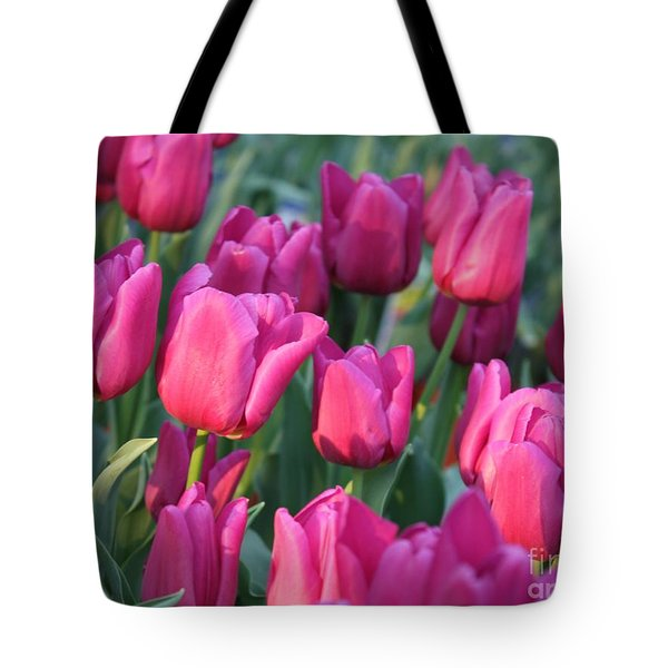 Sunlight On Pink Tulips Tote Bag by Carol Groenen