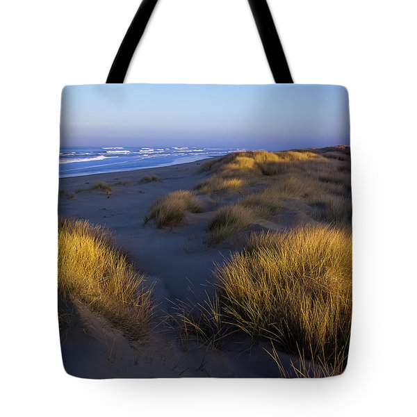 Sunlight On The Beach Grass Tote Bag