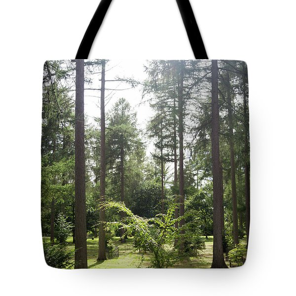 Tote Bag featuring the photograph Sunlight Through The Trees by Scott Lyons
