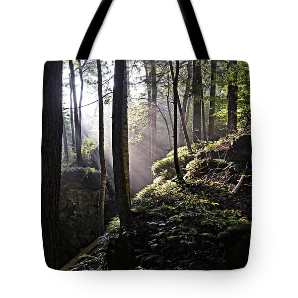 Sunlight Through Trees At Beartown State Park 3129c Tote Bag