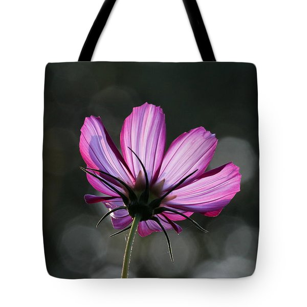 Sunlit Beauty Tote Bag