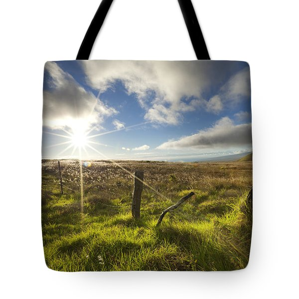 Tote Bag featuring the photograph Sunlit Country Field - Big Island by Charmian Vistaunet