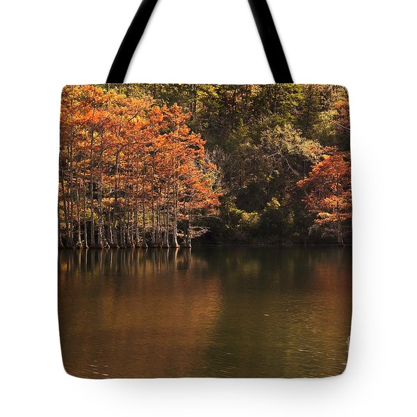 Tote Bag featuring the photograph Sunlit Cypress Trees On Beaver's Bend by Tamyra Ayles