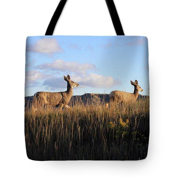 Sunlit Deer  Tote Bag