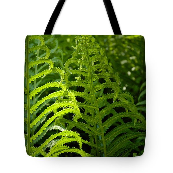 Tote Bag featuring the photograph Sunlit Fern by Mike Evangelist