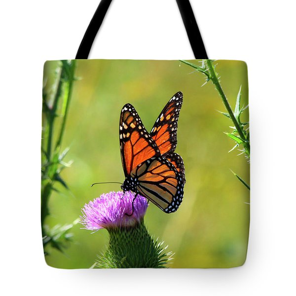 Sunlit Monarch  Tote Bag