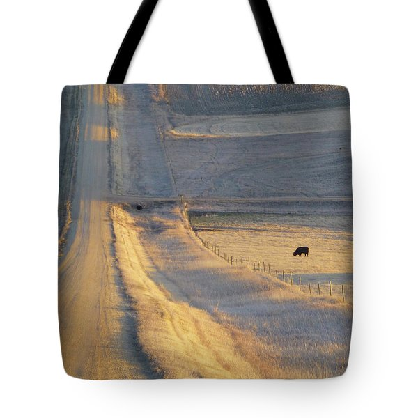 Sunlit Road Tote Bag