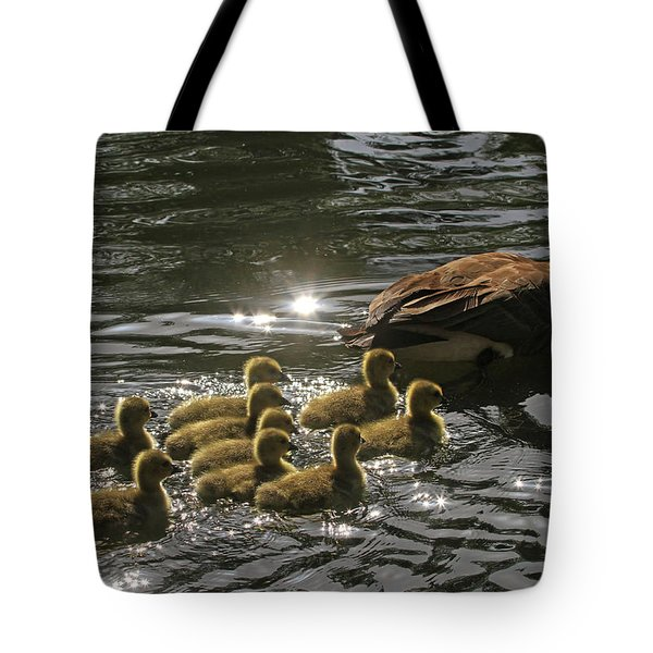Tote Bag featuring the photograph Sunlit Stroll by Donna Kennedy