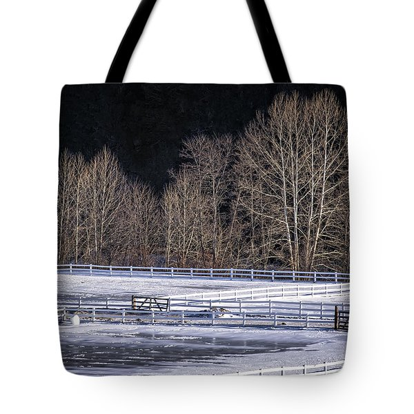 Sunlit Trees Tote Bag