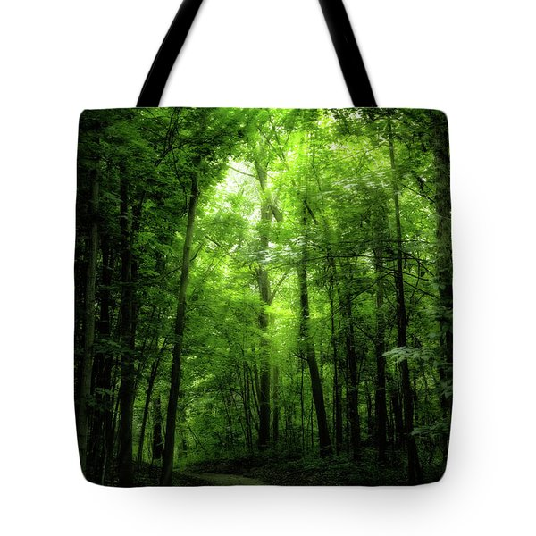 Tote Bag featuring the photograph Sunlit Woodland Path by Lars Lentz