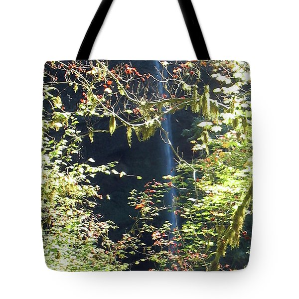 Tote Bag featuring the photograph Sunlite Silver Falls by Thomas J Herring
