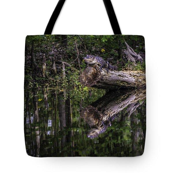 Sunning Tote Bag