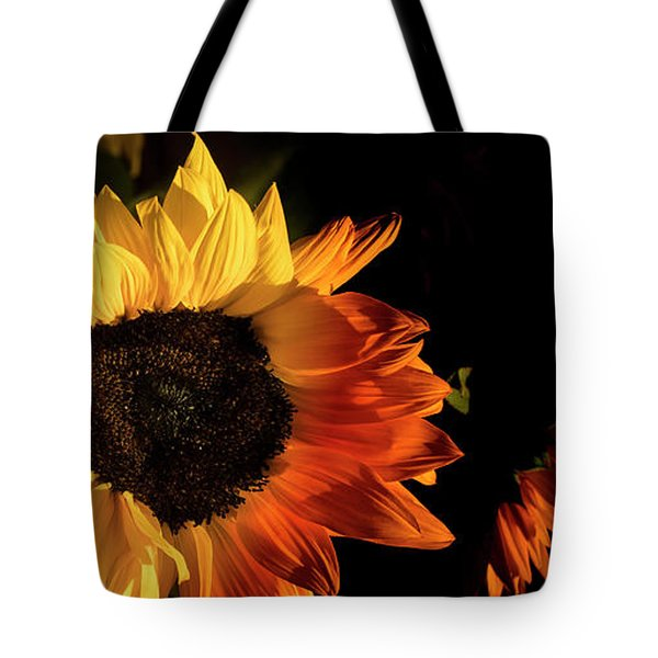 Tote Bag featuring the photograph Sunny An Dark by Michael Hope