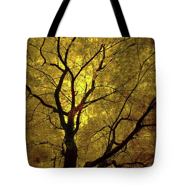 Sunny Branches Tote Bag by Gray  Artus