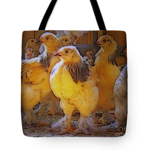Sunny Chicks Tote Bag