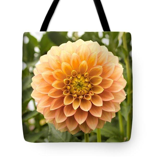 Sunny Dahlia Tote Bag