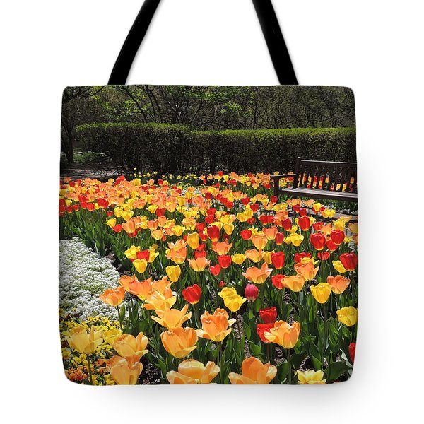 Tote Bag featuring the photograph Sunny Days by Teresa Schomig