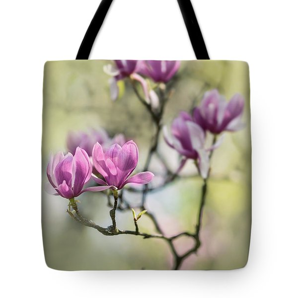 Tote Bag featuring the photograph Sunny Impression With Pink Magnolias by Jaroslaw Blaminsky