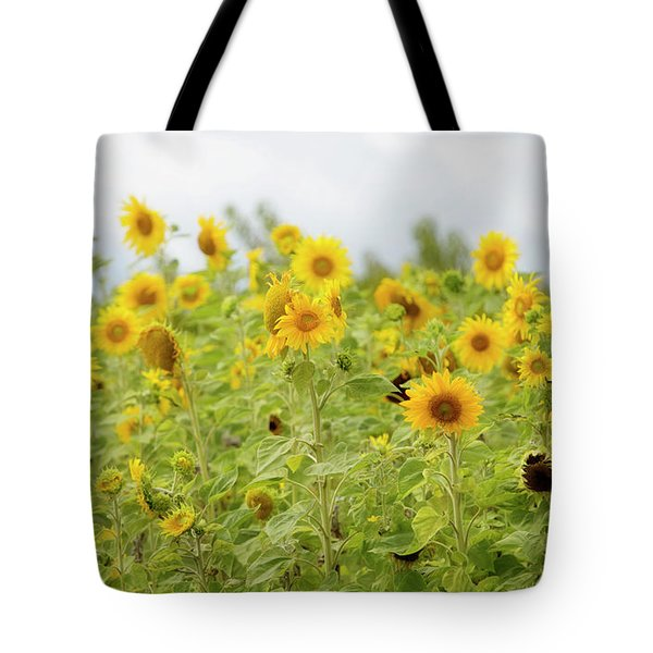 Tote Bag featuring the photograph Sunny Roadside by Rebecca Cozart