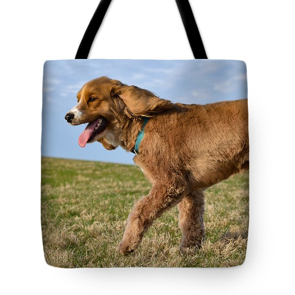 Sunny Stroll Tote Bag